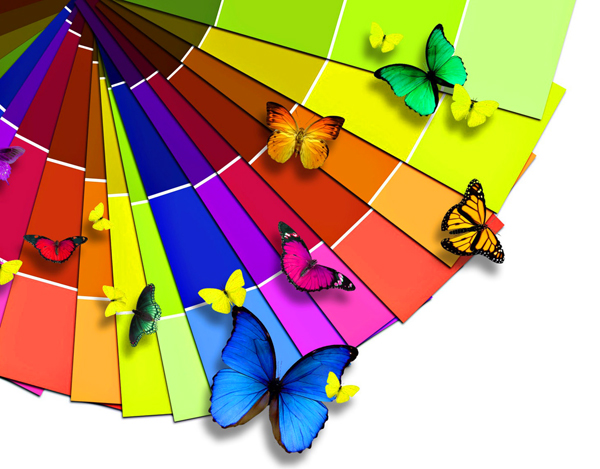 Bright-Color-Palette-And-The-Butterfly-1920x2560